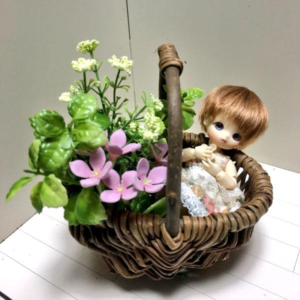 花かご2 - コピー