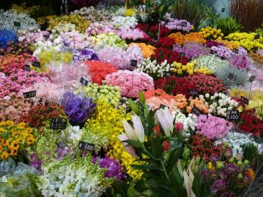 お花屋さん