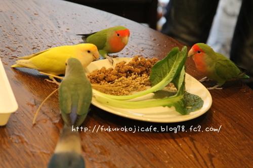 野菜集合1