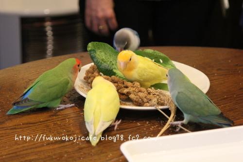 野菜集合2