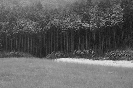 雪の仙石原1