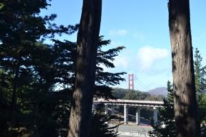 林から見えるゴールデンゲートブリッジ