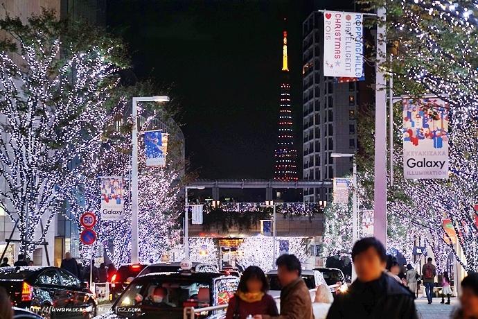 チビプードルモコの毎日☆東京タワー