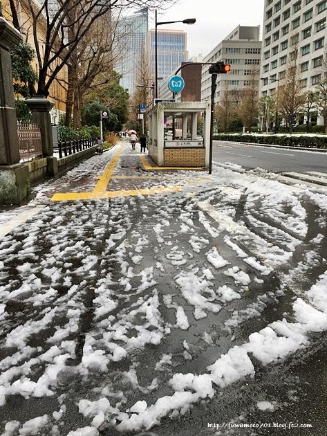 チビプードルモコの毎日☆雪B