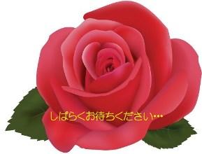 lgi01a201402160200.jpg