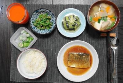 サバの味噌煮&けんちん汁 田舎ご飯