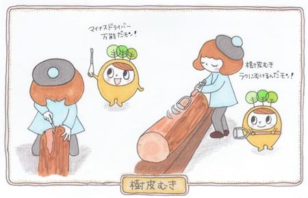seizai2.jpg