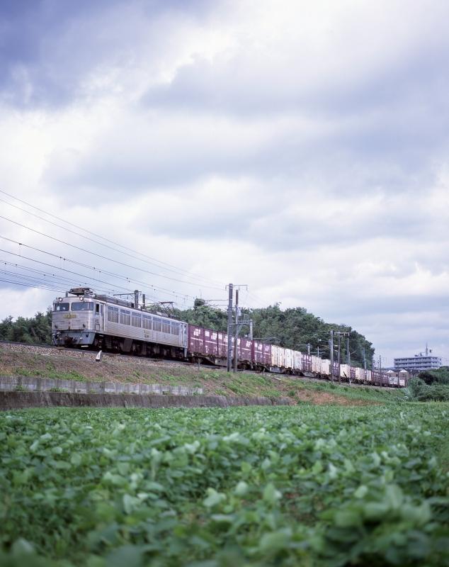 EF81-303.jpg