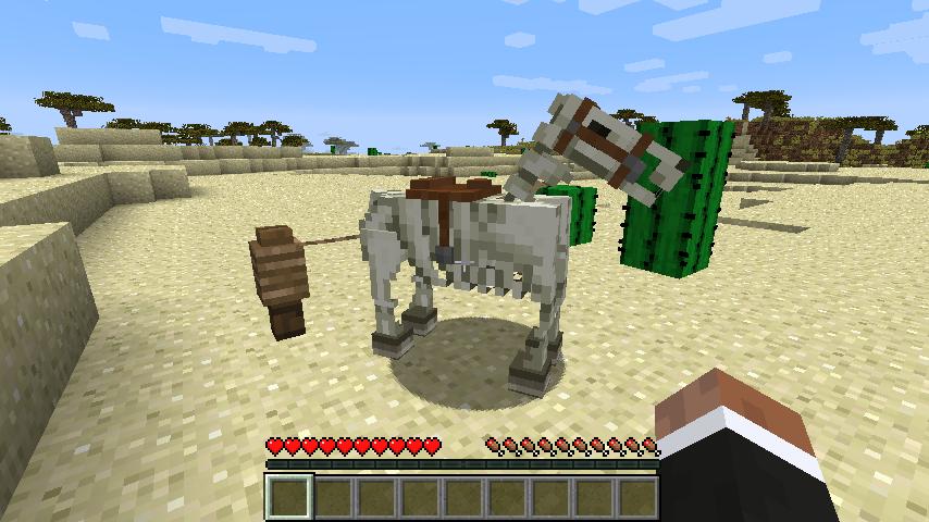Horse Upgrades-12