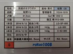 2016_02140219.jpg