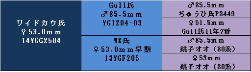 yg14wk53.jpg
