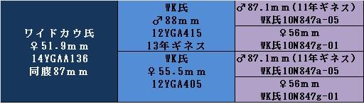 yg16kw52a.jpg