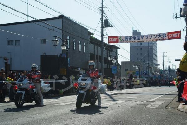 DSCF7384.jpg