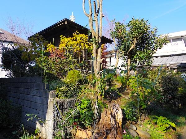 「桜塚1号墳」