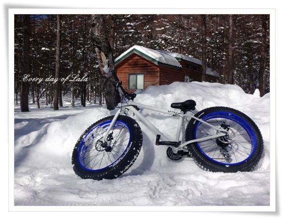DSC03510スノー自転車
