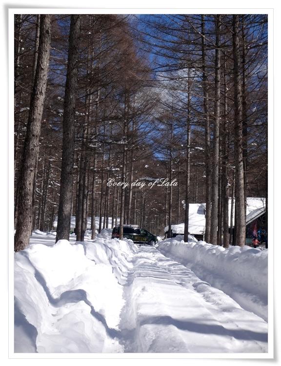 DSC03519雪道走行