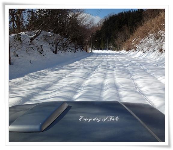 DSC03546雪景色