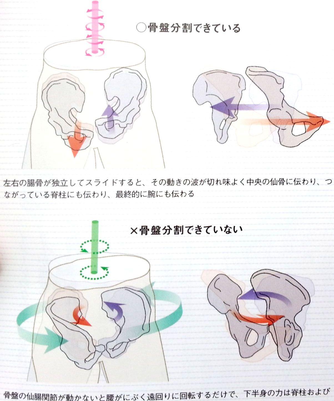 腸骨のブラッシング