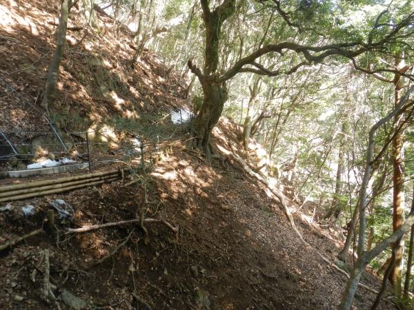 丹沢大山 076