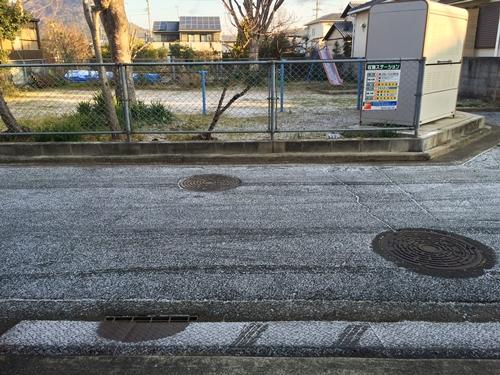 雪1月25日