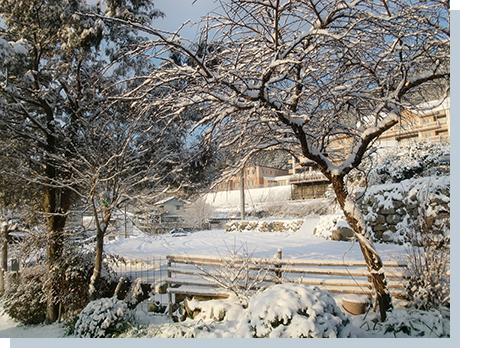 1月25日 二度目の雪景色