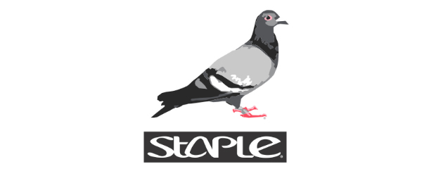 staple-pigeon_201601062005107d3.jpg