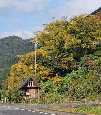 小屋と紅葉