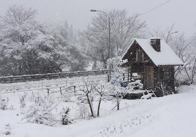 小屋280207雪10センチ