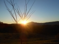 Sunset1219 (1)