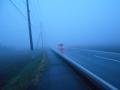 濃霧0308 (2)