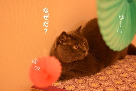 DSC_3405.jpg