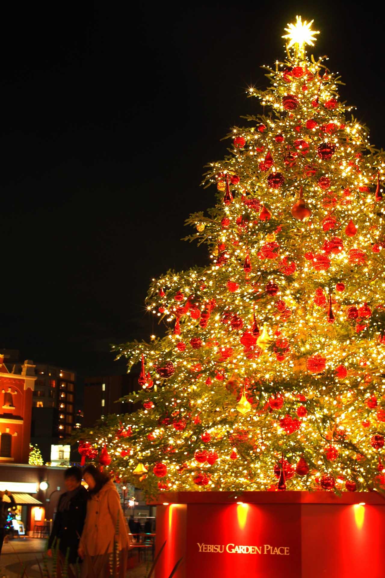 クリスマスツリー借用品