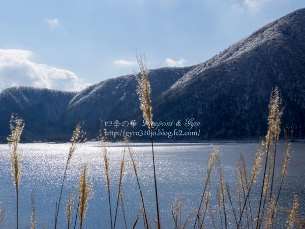 本栖湖 F