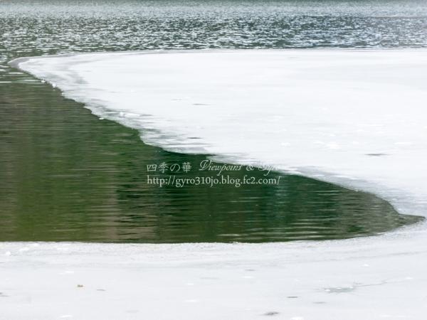 精進湖 F