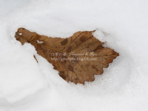 もう一つの雪景色 F