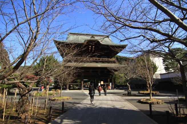 鎌倉7D+035_convert_20151212201929