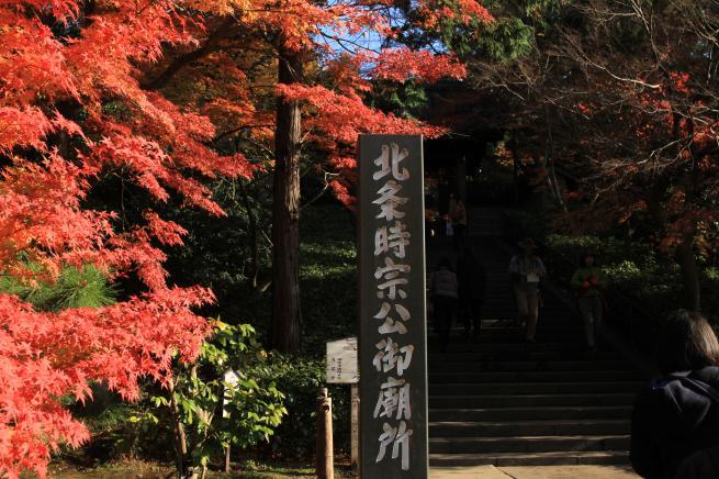 鎌倉7D+001_convert_20151212200946