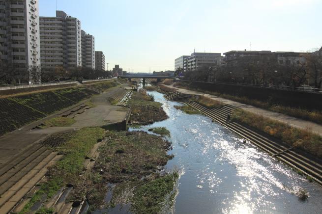 鎌倉7D+057_convert_20151212210319