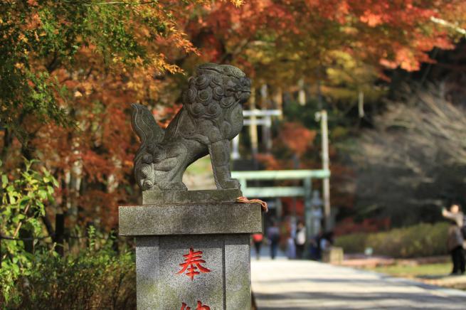 鎌倉7D+054_convert_20151212211549