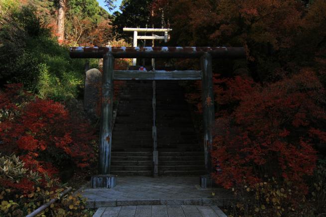 鎌倉7D+041_convert_20151212214523