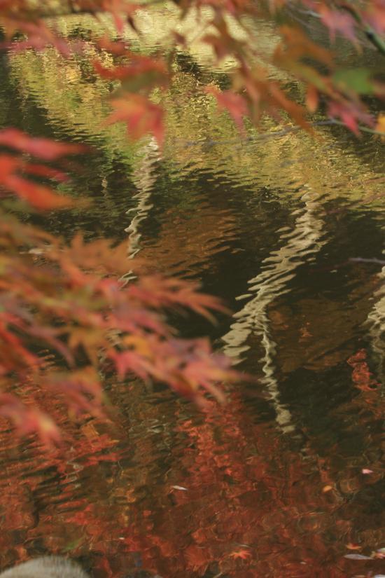鎌倉7D+018_convert_20151217193603