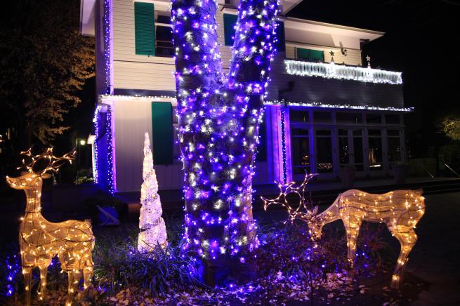 クリスマスツリー+004_convert_20151225035423