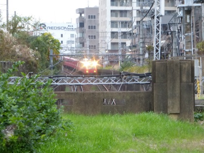 向野橋08