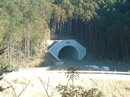 棚橋隧道03