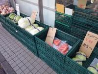 兎 ご飯 野菜