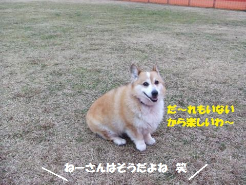 006_convert_20160214222030.jpg