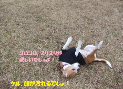 014_convert_20160214222146.jpg