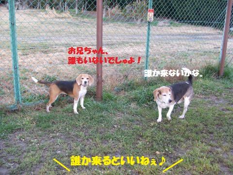030_convert_20160223221115.jpg