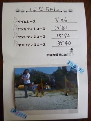P1080510-1.jpg