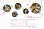 2015年賀状(Cat)